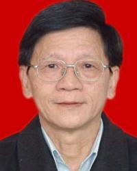杨春旭律师